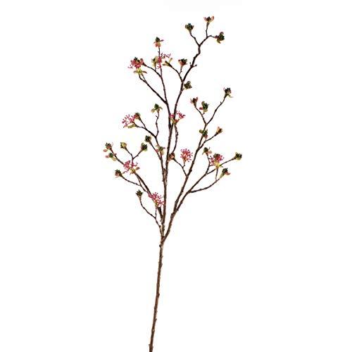 Kunstpflanzen Calvendo Premium