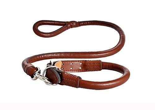 Lesypet® PU Dog Leine und Halsband-Leinen-Set für mittlere und große Haustiere -Brown (Dalmatiner Kit)