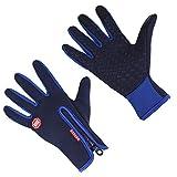Aruny Winter Handschuhe Winddicht Thermische Für Männer Frauen Ideal für Sport Im Freien Laufen, Radfahren, Wandern, Fahren, Klettern Touchscreen Multifunktionale Handschuhe (Blau, L)