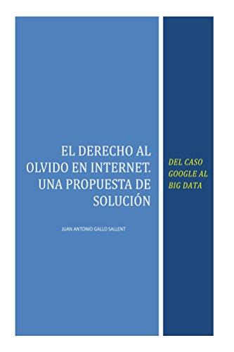Descargar Epub El Derecho al Olvido en Internet: Del caso Google al Big Data