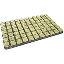 Rockwool Grodan trasplante Propagación Mat bandeja 77ER 3,6 x 3,6 cm