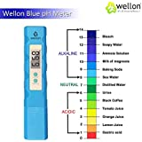 WELLON Digital Portable Pen Type pH Meter Tester Water Purity Pool Aquarium Measurement blue