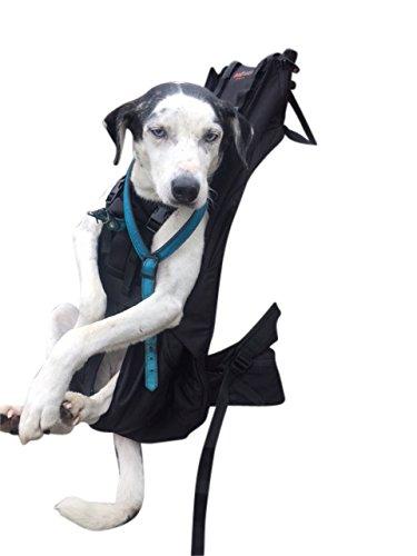 DogCarrier Premium XXL Hunderucksack - Hundetrage Hundetasche Hundebox für Hunde von 15-30kg Gewicht