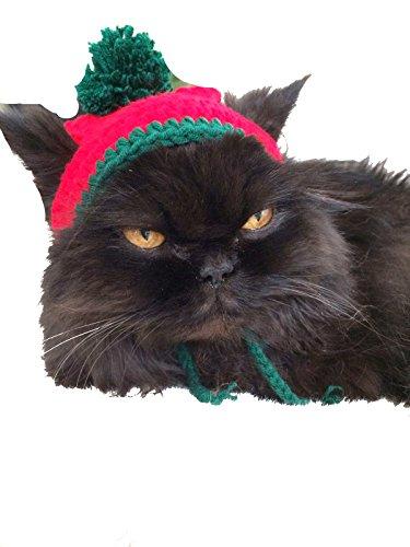 Super Niedlicher rot & grün Winter Pom Pom Ohrenaussparung klein Katze Hund Hat
