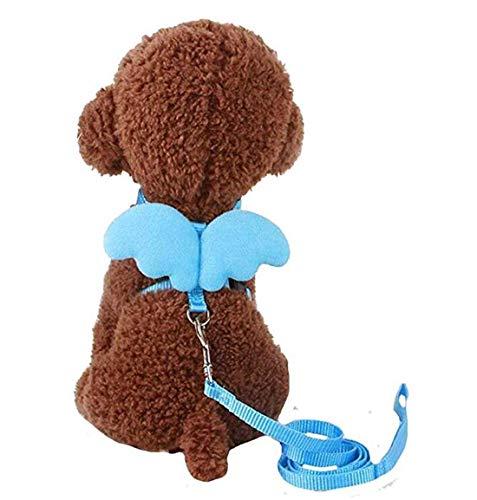 Ogquaton Premium 1 Stück Adorable Comfort Cat? Hundehaustiersicherheit Walking Best Harness + Reed Leash Engelsflügel Kostüm, Blau, XS Praktisch