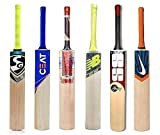 Cricket Bats - Best Reviews Guide