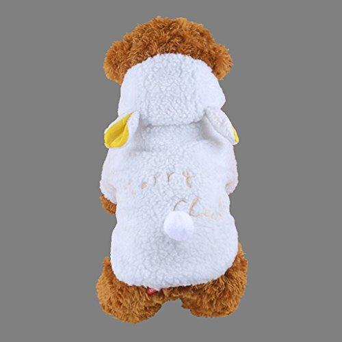 LQZ Haustierkostüm Haustier Schaf Jacke für Katze und Hunde Winter Kleidung Weiß (Hund Schaf Kostüm Für)