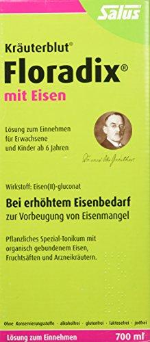 Floradix mit Eisen, 700 ml - Alternative zu Eisentabletten - Pflanzliches Spezial-Tonikum Schwangere...