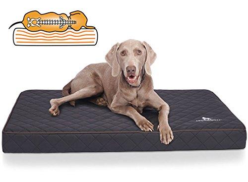 Knuffelwuff Orthopädische Hundematte Juna Hundebett aus laser gestepptem Kunstleder waschbar Hunde ortho orthopädisch memory XXL 110x66cm Schwarz
