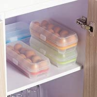 Any Kitchen Plastic Refrigerator Egg Storage Box/Container Holder Fridge Tray, 10 Grids
