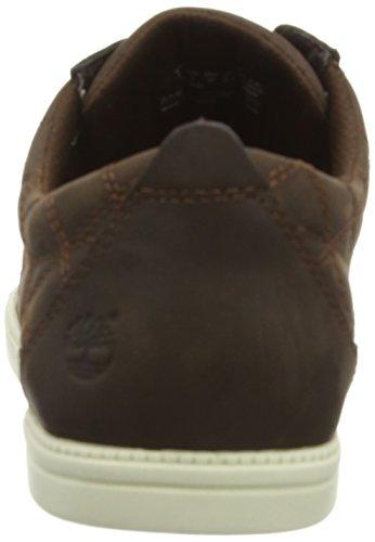 Timberland Newmarket Ftb_Fulk Plain Toe Ox, Baskets Basses Homme Marron - Marron