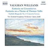 Vaughan Williams: Orchestral Music [DVD AUDIO]