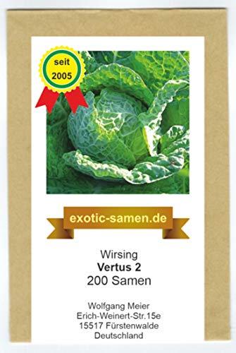 Wirsingkohl - Wirsing - Vertus 2-200 Samen