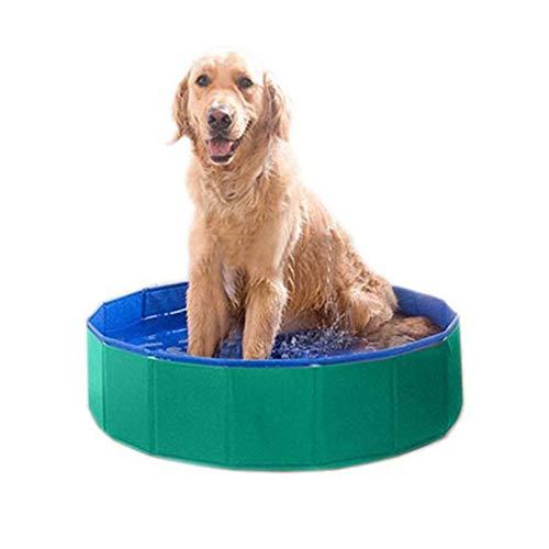 wimmen Schwimmbad Hund Baden Wanne Schwimmbad Zusammenklappbar Tragbar Pflegen Waschen Zubehörteil Zum Hunde Katzen Und Kinder (31.5 Zoll.D X 8 Zoll.H). Cacoffay ()