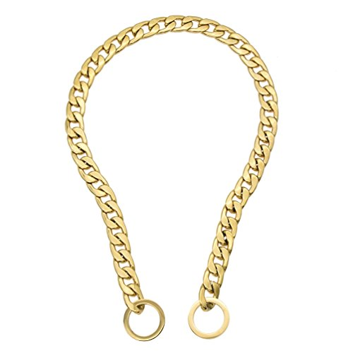 Hongma 24 Inch Hundeketten Halsband mit Leine Titan Spiegel für Hunde Haustier Stahlfarbe