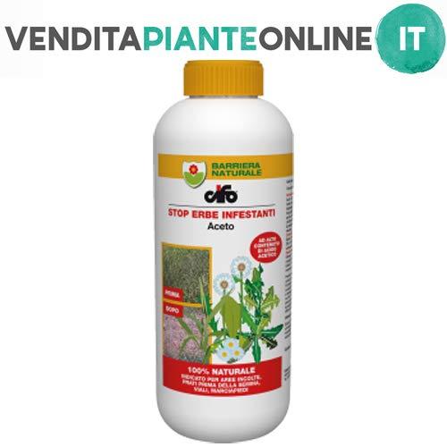 diserbante naturale - aceto cifo [1 litro]
