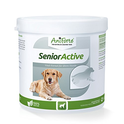 AniForte Senior Active Pulver 250 g für ältere Hunde, Unterstützt Gedächtnis- und Herzfunktion, Vitalität & Agilität, Vitamine & Mineral-Stoffe -