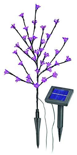 Esotec Solar LED Blütenstrauch pink
