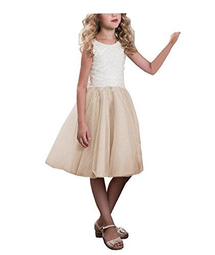 Cinderella Benutzerdefinierte Kostüme (CLLA dress Mädchen Hochzeit Blumenmädchen Kleider Knielänge Partyskleid Kinderkleid Kommunionkleid Ballkleid(Champagne,7-8)