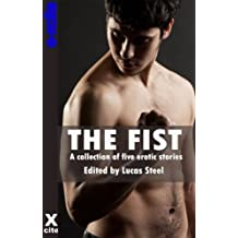 The Fist - a collection of gay erotic stories