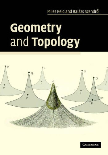 Geometry and Topology by Miles Reid (2005-11-10)