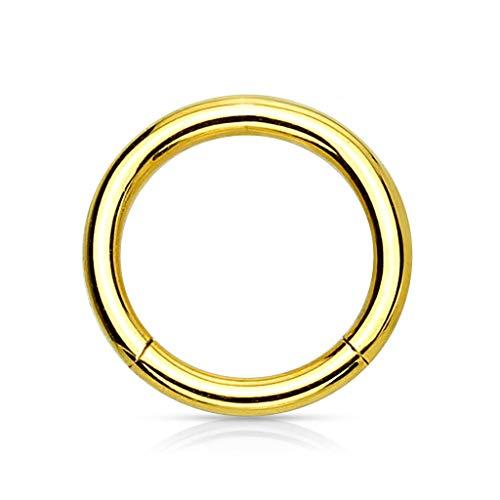 Trend Agent Piercing Ring Septum Clicker SEGMENTRING Nasenring Damen Herren SCHMUCK Chirurgenstahl Ohrring 1.2 x 6mm Gold - vergoldet