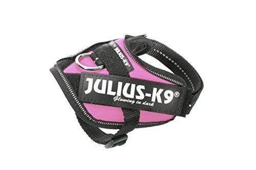 Julius-K9 16IDC - Power Harness