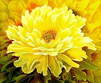 5 pièces / sac graines de pivoine, jaune, graines de fleurs de pivoine rose chinoise belles graines de bonsaï plante en pot pour le jardin de la maison