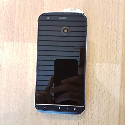 Caterpillar cs61DAB-ROW-en Cat S61Smartphone (13,21cm...