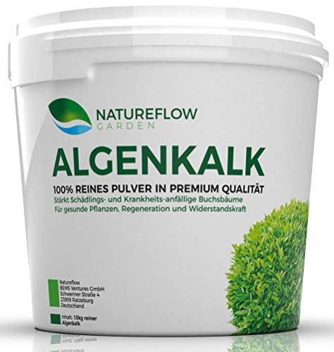 Algenkalk feinstes Pulver 100% rein für Buchsbaum - Widerstandskraft und Regeneration (z.B. bei Buchsbaumzünsler) - Premium-Qualität aus Island - Buchsbaumdünger und Naturdünger - 5 kg Eimer (Trockene Algen Dünger)