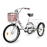 Best Tricicli adulti - Riscko - Triciclo per Adulti, con Due cestini Review