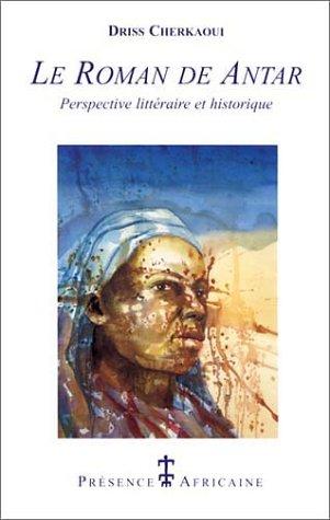 le-roman-de-l-39-antar-perspective-littraire-et-historique