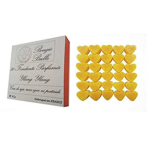 30-fondants-parfumes-ylang-ylang-50g-brule-parfum-cire-de-soja-naturelle-coffret-cadeau-fete-des-mer