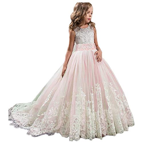 eider Party Hochzeit Prinzessin Kleid Stickerei Prinzessin Festzug Kleider Abschlussball Ballkleid Blumenmaedchenkleid Formale Partei Lang Schwanz Kleider 4-13 Jahre ()