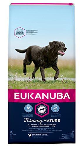 Eukanuba Mature Trockenfutter für große Rassen – Hundefutter mit neuer und verbesserter Rezeptur für reife Hunde von 6-9 Jahren in der Geschmacksrichtung Huhn – 1 x 15kg Beutel