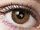 Farbige Kontaktlinsen Monatslinsen braun ohne Stärke mit Aufbewahrungsbehälter