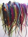 """Sexy Sparkles individuales 100Bulk plumas para extensión de pelo entre 4""""-7"""" O Más Rainbow de mezclas de colores con Grizzly sólida y incluye instrucciones de 20silicona de microperlas Plus"""