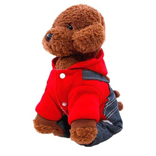 (Zhuhaijq Haustier Hund Herbst und Winter Mantel Hund Warme Kleidung - Bear Cub Trägerhose Mantel Kleider für Klein und Mittel Hunde Katzen)