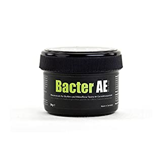 GlasGarten Bacter AE - 38g - Micropowder for Shrimp