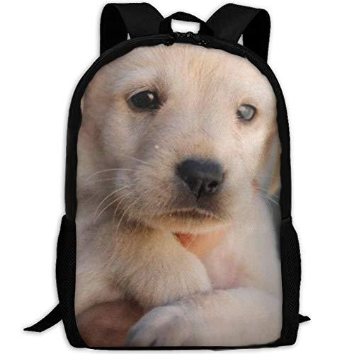 Wfispiy Baby Golden Retriever Reise High School Rucksäcke Lightweight Bag für College Girls Womens -