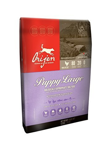 Orijen Puppy Large Dog Food 6.8kg by Orijen