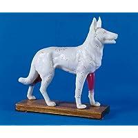 Akupunktur-Hund 30 cm preisvergleich bei billige-tabletten.eu