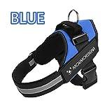 LUCYPET Reflektierende Design Harness Nylon Halskette Persönlichkeit Velcro Widening Harness Hyena Device Thickening Handle Double Control für kleine mittlere große Hunde-Blau,XXL