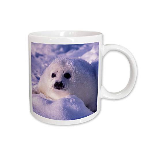 3dRose Tasse 74860_ 2Golf von St Lawrence, Sattelrobbe pup-cn14gje0025Gavriel Jecan Keramik Tasse, 15-Ounce -