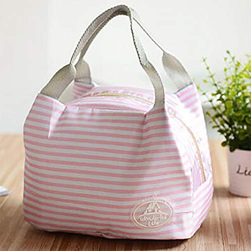 Box Cooler - Fashion Portable Insulated Polyester Lunch Bag Thermal Food Picnic Bags Cooler Box Storage Tote - Jumbo Bean Bags Large Zipper Charger Wheels Travel Medium Lansinoh Animals Plasti