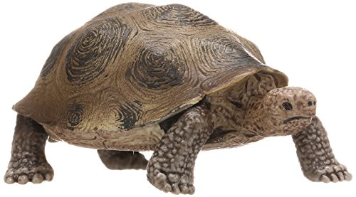 Schleich - Giant Tortoise Figure (14601)