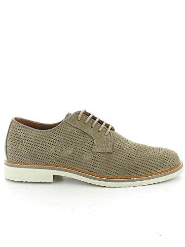 IGI&CO uomo scarpa classica 76775/00 TORTORA Tortora