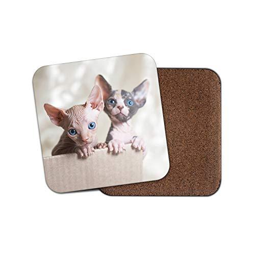 Sphynx Cats Untersetzer - Katze Kätzchen Siamese Süße blaue Augen Mama Tante Geschenk #15274 -