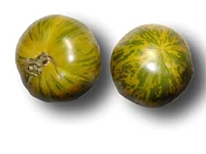 tomate green zebra gr nes zebra tomaten samen garten. Black Bedroom Furniture Sets. Home Design Ideas
