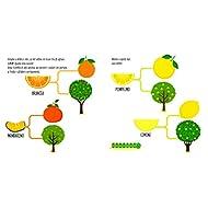 Il-mio-orto-Montessori-un-mondo-di-conquiste-Ediz-a-colori
